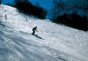 Catalochee Ski Area